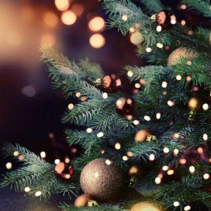 Noch keine Geschenkidee zu Weihnachten? Die Zahnklinik Stomatologia steht Ihnen mit Rat und Tat zur Seite.